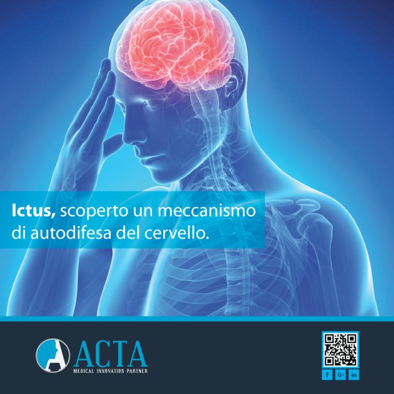 Ictus, scoperto un meccanismo di autodifesa del cervello